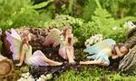 Classic Fairy Miniature Fairy Garden