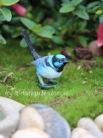 Blue Wren Miniature Fairy Garden
