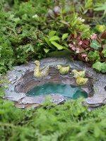 Duck Pond Fairy Garden