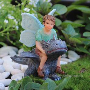 Fairy Draco with Dragon