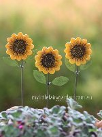Sunflowers Set Gypsy Garden