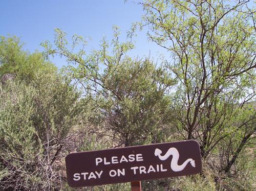 snake bite habitat