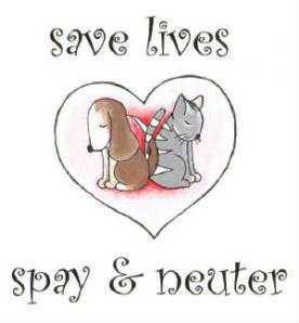 SPAY / NEUTER INFORMATION