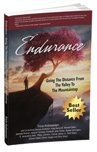 Endurance - Going The Distance From The Valley To The Mountaintop