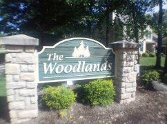 The Woodlands Homes for Sale in Avon Lake Ohio