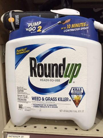 Roundup Weed & Grass Ready to Use Pump N Go 2