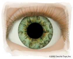 Eye Ocean Green