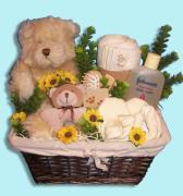 Bear Necessities Baby Gift Basket Canada