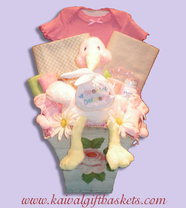 Blossom Baby Gift Baskets
