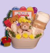 Charming Baby Gift Basket Canada