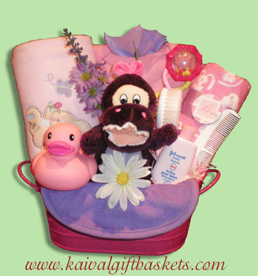 Darling Baby Gift Basket Canada