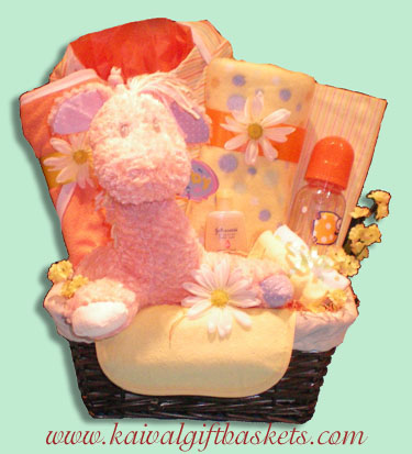 Giggles Baby Gift Basket-Free Delivery