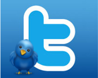 Twitter Marketing For Business